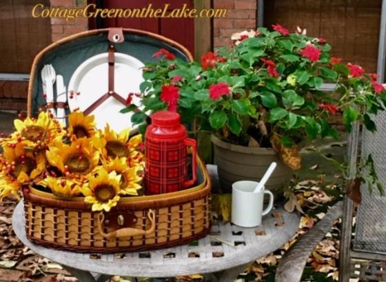 front basket.jpg