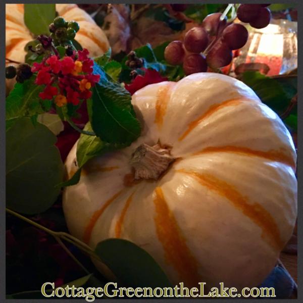 perfect pumpkin.png