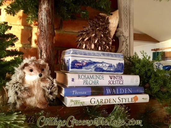 hedgehog and porcupine