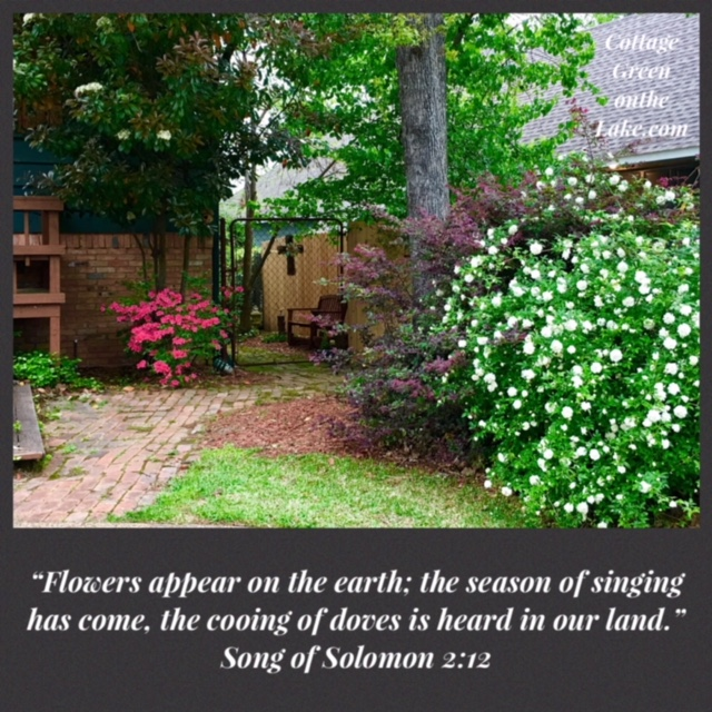 scripture Solomon flowers