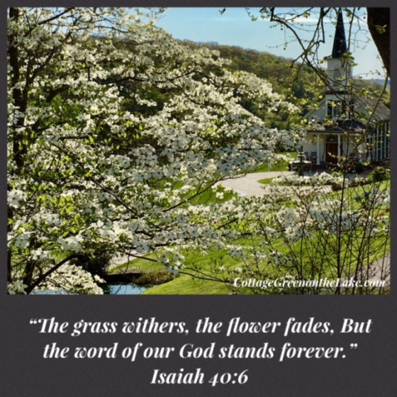 dogwood scripture